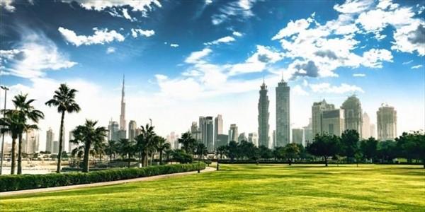 Giovanni Bozzetti - La nuova ecologia degli Emirati Arabi